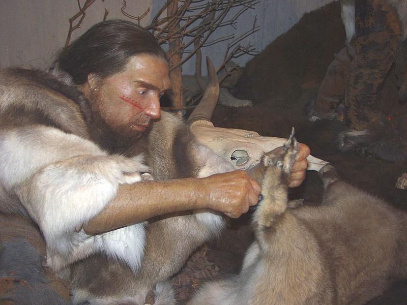 Resten Neanderthalerkamp Gevonden In S Hertogenbosch