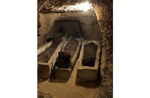 40 mummies gevonden