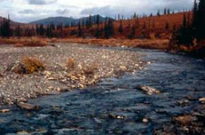 De Agie River in Kobuk Valley National Park.